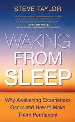Waking From Sleep' by Steve Taylor